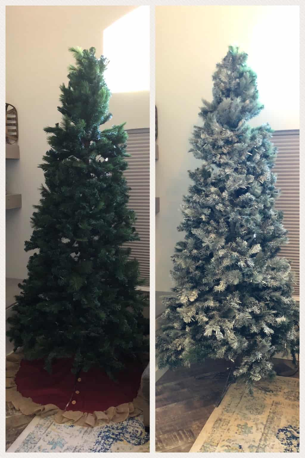 Before and After using white spray paint for christmas trees.