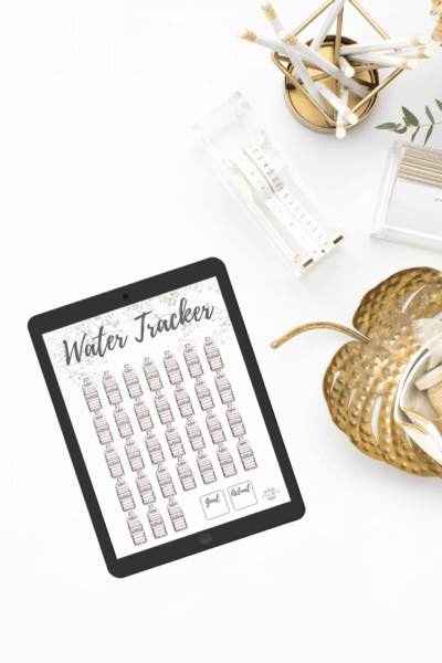 Water tracker for ipad