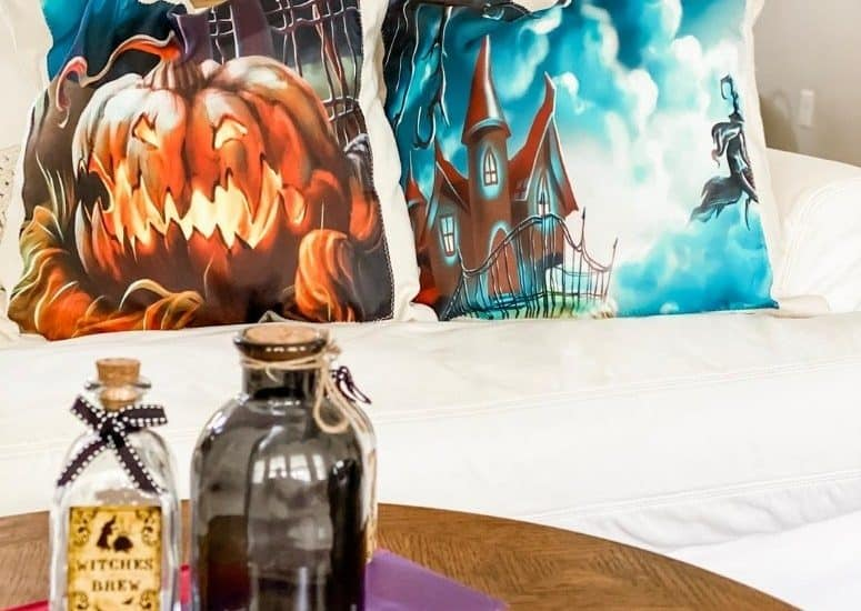2 halloween pillow cases on white courch